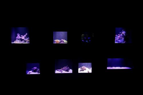 LUMISPOT 12W Neptune LED